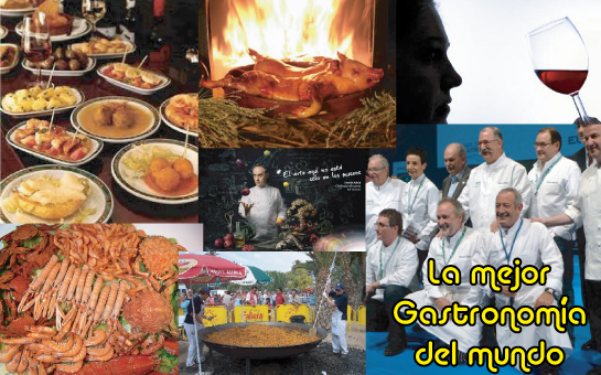 The best gastronomy in the World