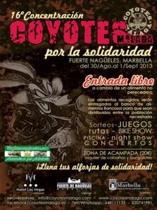 coyotes-malaga-2013